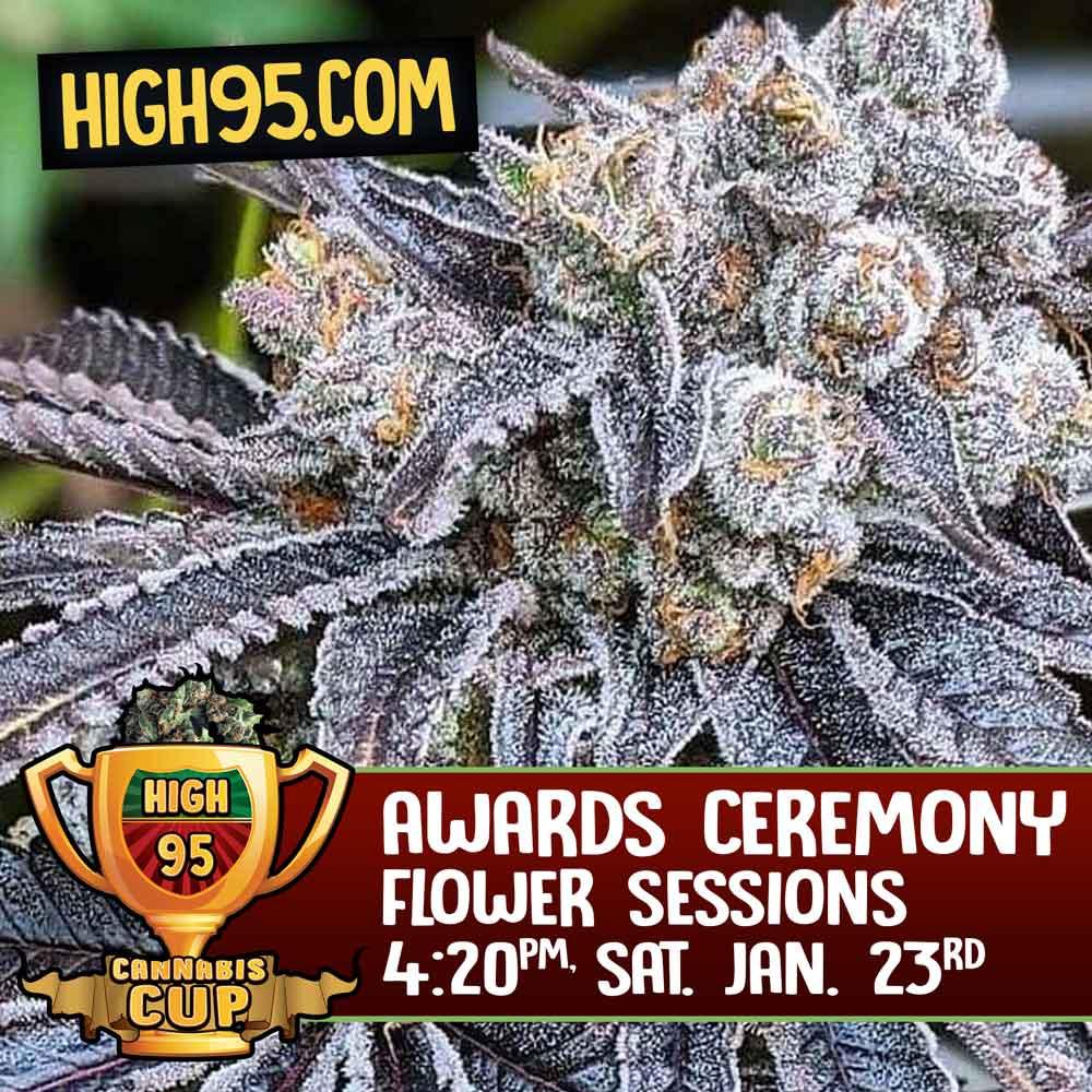 High 95 Awards